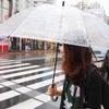 雨三茶散歩