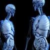 【体験談】大腸内視鏡検査を受けてきた 痛みはない 辛いのは下剤を飲むこと