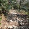 五助山から石切道へのハイキング(その3)石切道