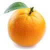 すべては、つながっている。オレンジ一つの中に世界全体を見るマインドフルネス。「味わう生き方」その8。
