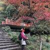 登山履歴書(丹沢大山(20190305・0409・1119)