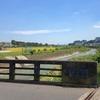 小鮎川を歩く 3つの沢が集まって川がはじまる場所へさかのぼる
