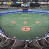 今年はプロ野球どうなるんでしょうかね。