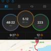 第16回越後湯沢秋桜ハーフマラソン(10km部門)①プロローグ〜後悔先に立たず