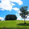 美瑛散歩① 旧マイルドセブンの丘と周辺の丘の風景&星景タイムラプス撮ってきました!
