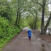 雨の日の散歩&医療従事者への差別、ソーシャルディスタンスを考える