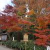 鎌倉のお寺を散策~「円覚寺」の紅葉~