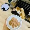 いつもご飯を食べているケージに飼い主を案内するウキウキな猫