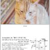 「猫とつき合う法」