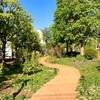サロン前の恵比寿ガーデンプレイスのハーブ園がリニューアル!