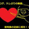 【wiki風】プロフィール書いた