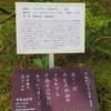 万葉歌碑を訪ねて(その1085)―奈良市春日野町 春日大社神苑萬葉植物園(45)―万葉集 巻二 九四