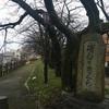 初詣に護国神社、そして富山大橋周辺プチ巡り