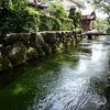 醒ヶ井宿を流れる地蔵川の水の透明度に感動した