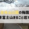 岩本山公園の梅園 絶景富士山まるごと岩本山