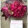 かちまい☆はじめての優しいベリーダンス7/18