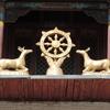 初めてのモンゴル「観光旅行」(6)ガンダン寺にて