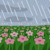 ちょうどいい雨