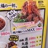 秋葉原 【肉汁麺ススム】 に行ってみたけどうーんどうなのよ?