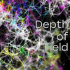 Field of ViewじゃなくDepth of Field