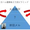 【優勝】日ハム大谷翔平2刀流界で最強説【画像検索】