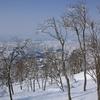 BCスキーって凄いな 阿寺山