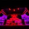 【京都・元離宮二条城アートアクアリウム2020】🏯夜の二条城で✨幻想的な世界を✨