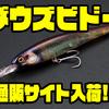 【ジャッカル】春のバス釣りに欠かせないルアー「ダウズビドー」通販サイト入荷!