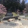岐阜キャンプ