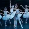 20年ぶりにバレエ『白鳥の湖』を観劇。乙女スタイルに感激。