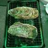 宇都宮PARCO屋上 牡蠣奉行に行って来ました!