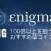 Enigma(エニグマ)/ENG【100倍以上を狙う、おすすめ草コイン】