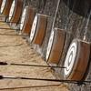 弓道の始め方【弓道初心者教室体験記】明治神宮で弓を引きたい