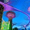 【夜景】ガーデンズ・バイ・ザ・ベイの夜はまるでファイナルファンタジーの世界!