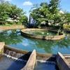 等々力渓谷・久地円筒分水・名主の滝公園の写真