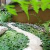 裏庭を日本庭園にしたい