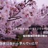 日本の鎖国国家は桜も関係してた⁉︎ 桜が教材。