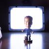 初心者でもかんたんな撮影用LEDライトNeewerCN-126 スタンド付き