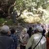 ペラール神父様と行くルルド、イタリア巡礼10日目