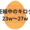 妊娠中のキロク【23w~27w】