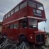 ロンドンバス ジェラート