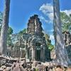 「バンテアイ・プレイ(Banteay Prei)」~荒れた小規模の寺院、その裏の濠跡には・・・こんな群れが。。。