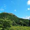 【アウトドア部】札幌市南区「八剣山(観音岩山)」を登ってきました! 下山後はバーベキューも。
