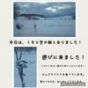 2018年2月21日(水)【常連のヒヨドリさん?&オリジナル健康ドレッシングの巻】
