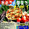 9月講座は「木のこん野菜でピザ!」
