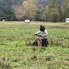 【ストライダー】2歳で始めるキッズバイクのおすすめ【スパーキー】