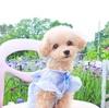 【山梨】八ヶ岳で愛犬とランチ♡