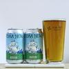 TDM 1874 Brewery 「IPA#8」