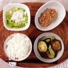 ズッキーニの煮びたし、たまねぎレタスサラダ、小粒納豆。