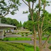 洞峰公園体育館 ~つくば市とその周辺の風景写真案内(141)